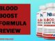 Blood Boost Formula Review